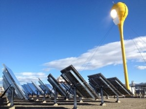 Yellow solar tulip among upturned solar panels