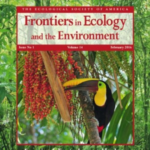 marriage-business-ecology-asu