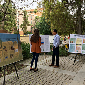 Sustainability Projects Showcase