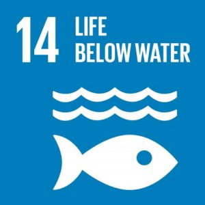 Icon of Sustainable Development Goal 14 showing fish and waves silhouette