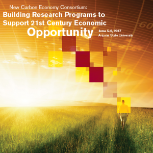 New Carbon Economy Consortium: Building research programs to support 21st Century economic opportunity