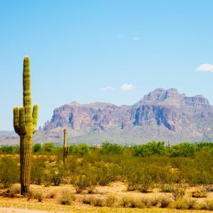 Landscape photo of Superstition Wilderness with saguaro