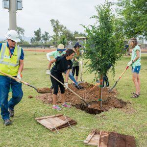 ASU students and utility volunteers plant trees as part of a carbon offset project