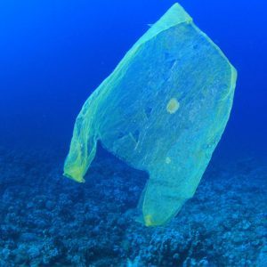 Plastic bag slowly decomposing and floating underwater