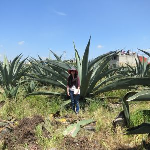 Julia Bausch in front of Agave