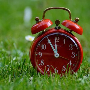 Red alarm clock sitting on green grass