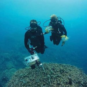 2 ASU researchers using equipment to map the coral reef