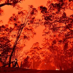 Image of Australian wildfire