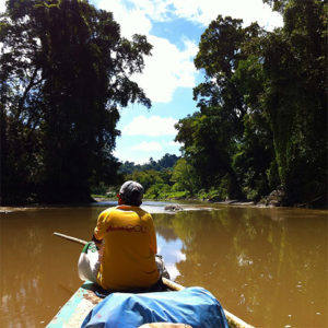 Back of man navigating canoe on narrow river