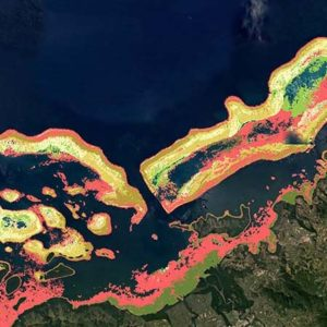 ASU, partners announce completion of Allen Coral Atlas mapping